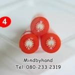 แท่งผลไม้ Polymer Clay Fruit ลาย 04