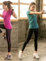ชุดออกกำลังกาย เซ็ท 2 ชิ้น เสื้อยืดแขนสั้น+กางเกงขายาว สีเทา/สีเขียว/สีแดงกุหลาบ/สีฟ้าเข้ม (L,XL,2XL,3XL,4XL) ZYT9293