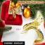 Inspire Jewelry กำไลพญานาคนพเก้า ชุบทอง ลงยา สรีระสวยงามปานมีชีวิต เครื่องประดับมงคล สำหรับของขวัญ ของฝาก ปีใหม่่2018 วันเกิด พิธีมงคล thumbnail 1