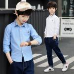 hh678 เสื้อเชิ๊ต เด็กโต size 120-160 3 ตัวต่อแพ็ค (เลือกไซส์ได้ให้ครบแพ็ค)