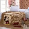 ผ้าห่มนาโน เกรด A Mickey Mouse 4