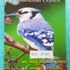 ►หมอพิชญ์ ไบโอบีม◄ หนังสือกวดวิชา ชีววิทยา ม.ต้น Fundamental Coma สรุปเนื้อหาของชีวะ ม.ต้น ทั้งหมดในเล่มเดียว จดครบ แบบฝึกหัดเฉลยครบ หนังสือมีขนาด 21*29*0.6 ซม.