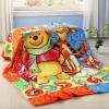 ผ้าห่มนาโน เกรด A Pooh & Friend 2