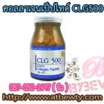 คอลลาเจนเป็ปไทด์ CLG500 Collagen Peptide