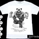 P033 God panda