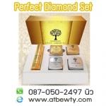 Perfect Diamond Set เพอร์เฟค ไดมอน เซท ของแท้ ราคาถูก พร้อมของแถม