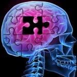 10 พฤติกรรมที่ทำให้สมองฝ่อเร็ว