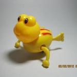 กบไขลาน ว่ายน้ำ สีเหลือง