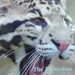 หนังสือ Biobeam ICU Course : The Ecosystem ปี 2556 (พร้อมเฉลย)
