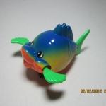 ปลาแก้มป่องไขลาน สีน้ำเงิน