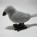 นกไขลานสีเทา