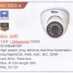 WI13002-4