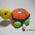 เต่าไขลาน สีส้ม