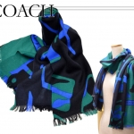 Coach Abstract Horse Carrier shawl scarf wrap # 83835 สี Green/Black/Royal Blue