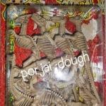 โครงกระดูกไดโนเสาร์ 8 ตัว