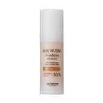 Skinfood Soy Nutri Foundation SPF20 PA +