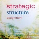 Strategic Structure Assignment ครูพี่แนน