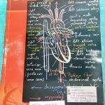 ►ยูเรก้า◄ BIO 5353 หนังสือกวดวิชาชีววิทยา ม.ปลาย อ.เอกฤทธิ์ รวมทุกบท ในหนังสือเน้นภาพสี กราฟ ตาราง และแผนภาพเกี่ยวกับวิชาชีววิทยาในระดับชั้น ม.ปลาย ส่วนใหญ่ใช้ภาษาอังกฤษ และภาษาละตินประกอบคำอธิบาย หนังสือเล่มหนาใหญ่ มีน้ำหนัก พิมพ์สีสวยงามทุกหน้า พิมพ์ด้ว