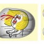 """""""พร้อมส่ง""""นำเข้าจากญี่ปุ่น 100% Line Sticker ตกแต่ง โทรศัพท์และปุ่มโฮม - James+Moon"""