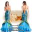ชุดเจ้าหญิงนางเงือก ชุดแฟนซีใต้ทะเล ชุดคอสเพลย์ ชุดแฟนซีนางเงือก ชุดเจ้าหญิงเมอเมด thumbnail 2