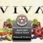 วีว่าพลัส VIVA plus น้ำองุ่นสกัดเข้มข้น ค่าต้านอนุมูลอิสระสูงที่สุดในโลก thumbnail 3