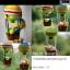 แพทเทิร์นตุ๊กตาถักบอลลูนและผู้โดยสารทั้งแปด thumbnail 3