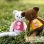 แพทเทิร์นตุ๊กตาถักหมีน้อยหลากสี thumbnail 2