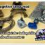 Cognitive Inear mod (blue) thumbnail 3