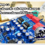 NYX Mini Amplifier thumbnail 8