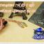 สายหูฟังเกรดพรีเมี่ยม 7N ถัก8เส้น+Jack คุณภาพเยียม (MMCX) thumbnail 2