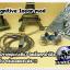 Cognitive Inear mod (transparent) thumbnail 2