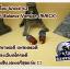 อสงไขย Wood 42 Best Balance Version (MMCX) thumbnail 3