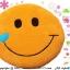 เบาะรองนั่งแฟนซี-พระจันทร์ยิ้ม-สีส้ม thumbnail 1