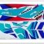 สติ๊กเกอร์ DASH ปี 94 ติดรถสีน้ำเงิน thumbnail 1