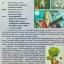 The Brain ภาษาไทย ม.3 วรรณคดีวิจักษ์,หลักภาษา,วิวิธภาษา thumbnail 2
