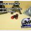Tarantula Inear Mod (Red) (MINI DC) thumbnail 3
