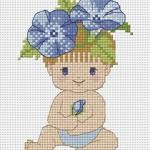 เบบี้บูม (ดอกไม้สีฟ้า)