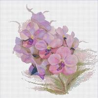 ดอกไม้และผลไม้ Flowers & Fruits