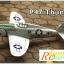 P-47 Thunder เครื่องรบสงครามโลก thumbnail 7