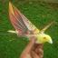 E-Bird นกบังคับวิทยุ thumbnail 5