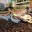 AH-64 Apache Mini RC Helicopter 3.5 CH thumbnail 8
