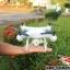 SKY DRONE LH-X25wf Drone+โดรนรุ่นปรับกล้องได้ thumbnail 9