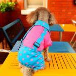 ชุดสี่ขาสุนัข ทูโทนลายจุด สีฟ้า-ชมพู ไซส์ XS