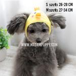 หมวกสุนัขแฟนซี ลายไก่ ไซส์ M