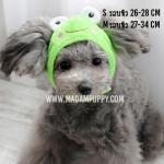 หมวกสุนัขแฟนซี ลายกบ ไซส์ S