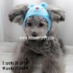 หมวกสุนัขแฟนซี ลายหมา ไซส์ S