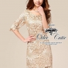 Embroidery gold lace dress