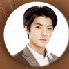 เข็มกลัด EXO : SEHUN [2015 AUTUMN IVYCLUB]