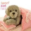 ที่นอนสุนัขสีหวาน Sweet Pink พร้อมส่ง