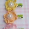 กิ๊บติดผมดอกไม้ สีพาสเทล เซท 5 ชิ้น